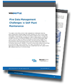 This White Paper Outlines How to Maximize SAP Plant Maintenance Effectiveness white paper