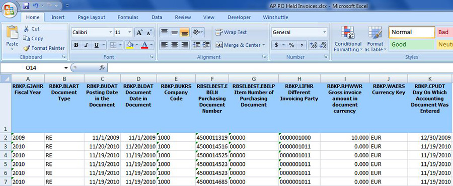 View SAP purchase order data results in Microsoft Excel