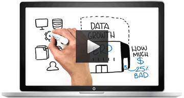 Winshuttle Lean Data Management video